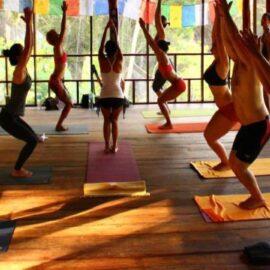 Enlightenment & Yoga Teacher Training Program?