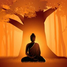 Yoga Teacher Training Taught Me About  Enlightenment
